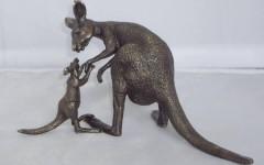 Kangaroo with joey 2